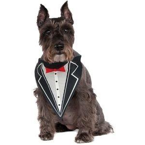 Rubie's Pet Shop Tuxedo Bandana
